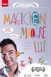 Affiche-Magicien-malgré-lui-Sebastien-Mossière